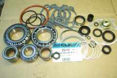 25110 parts kit seals bearings shims