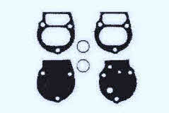 40300 diaphragm kit