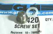 22420 Screw set