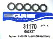31170 gasket for housing drain screw
