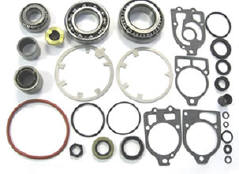 25110 lower gearcase rebuild kit 31-803068T1